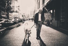 Qué es la terapia asistida con animales