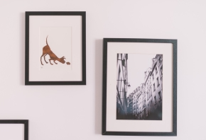 Ideas para la decoración de clínicas veterinarias