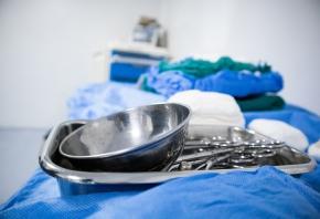 Quirófano veterinario: tipos y requisitos que tienen estos espacios