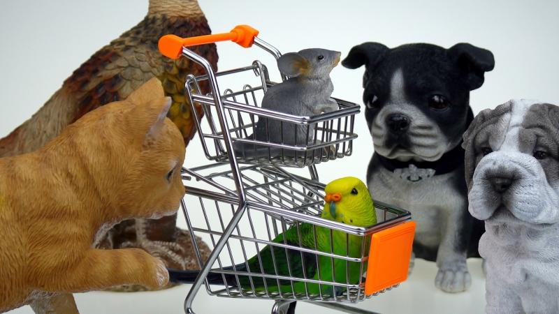 shopping-1900998_1280